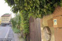 Odenwald: Burgensteig an Spitzer- und Kunz-Mühle im Apfelbachtal - Foto: Stefan Frerichs / RheinWanderer.de