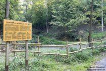Odenwald: Amphibienteich am Marbach bei Leutershausen - Foto: Stefan Frerichs / RheinWanderer.de