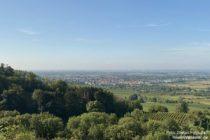 Odenwald: Blick auf Schriesheim - Foto: Stefan Frerichs / RheinWanderer.de