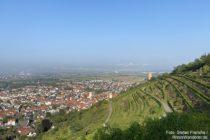 Odenwald: Blick auf Schriesheim und die Strahlenburg - Foto: Stefan Frerichs / RheinWanderer.de