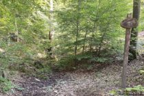 Odenwald: Sickerquelle Am Kottenbrunnen - Foto: Stefan Frerichs / RheinWanderer.de