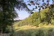 Odenwald: Blick ins Mühlbachtal - Foto: Stefan Frerichs / RheinWanderer.de
