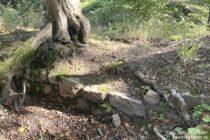 Odenwald: Mauerreste der Ruine Kronenburg - Foto: Stefan Frerichs / RheinWanderer.de