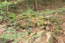 Odenwald: Mauerreste der Ruine Wolfsgrund bei Dossenheim - Foto: Stefan Frerichs / RheinWanderer.de