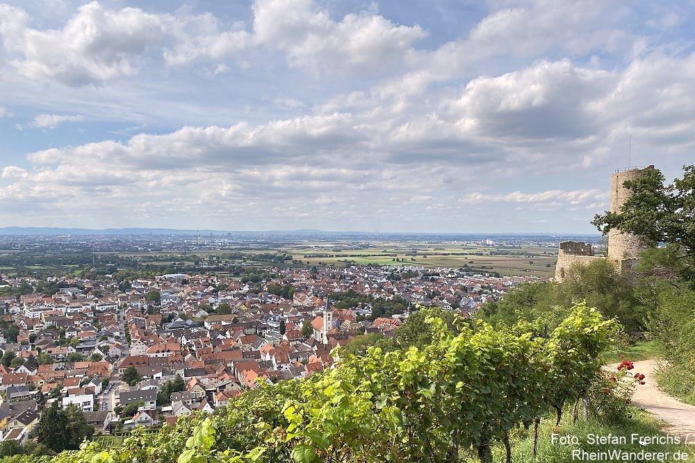 Odenwald: Blick auf Schriesheim mit der Strahlenburg - Foto: Stefan Frerichs / RheinWanderer.de