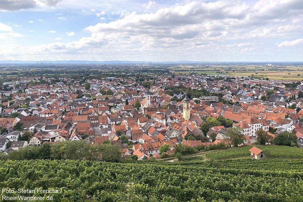 Odenwald: Blick von der Strahlenburg auf Schriesheim - Foto: Stefan Frerichs / RheinWanderer.de